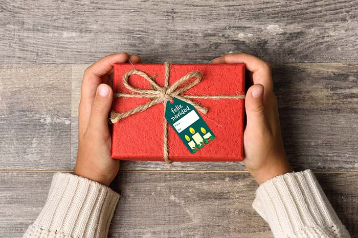 Little girl hands holding gift box.